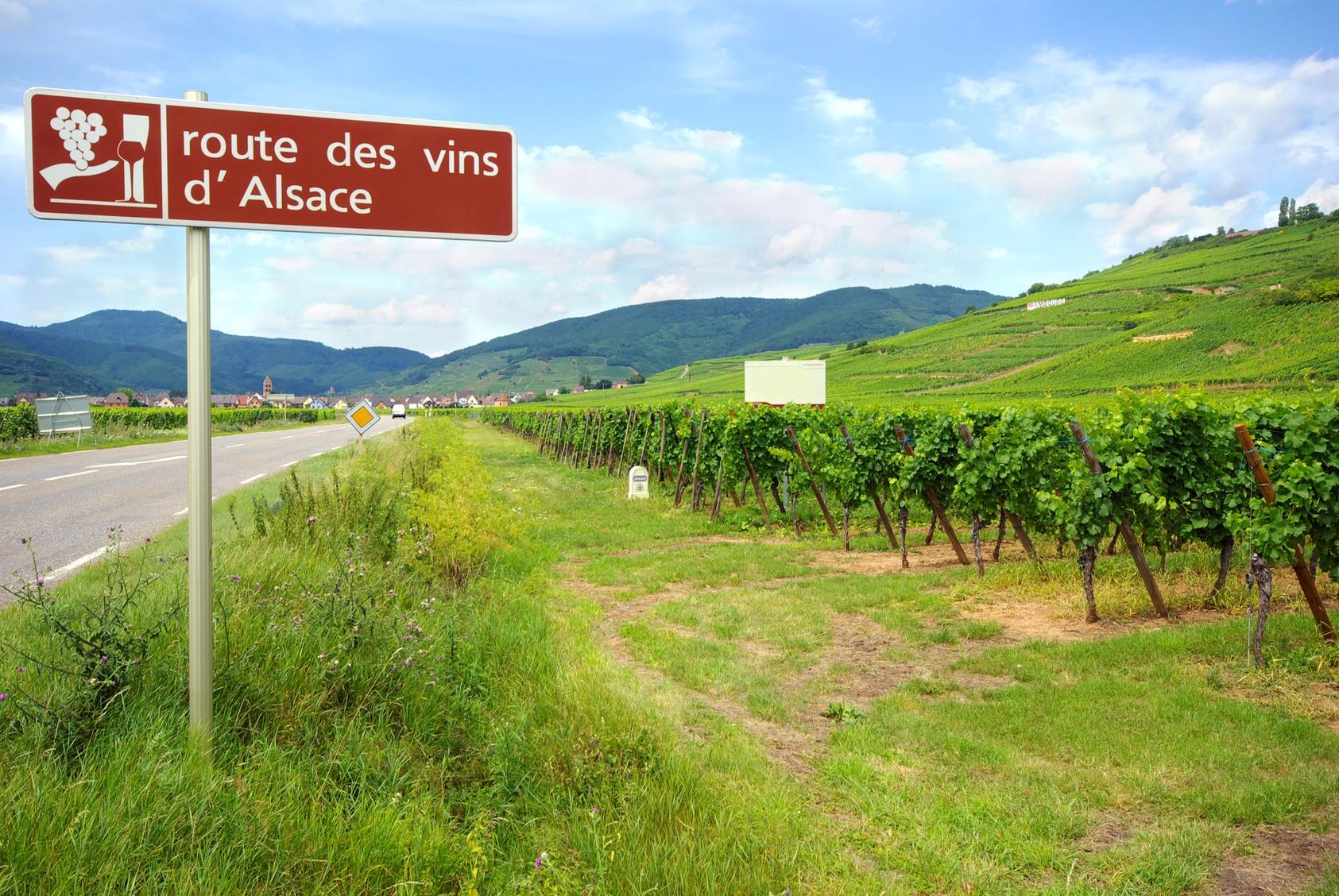 Ballade Moto en Alsace